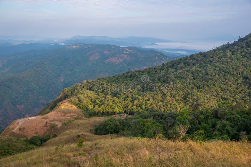 Skog för natur för landskapbergdal med campa tält fotografering för bildbyråer