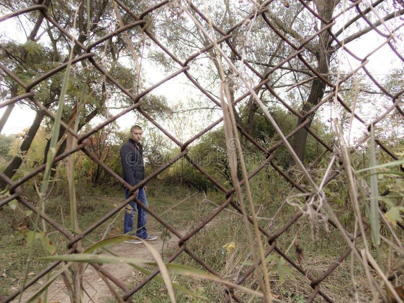 Skog för ung man på våren arkivfoto