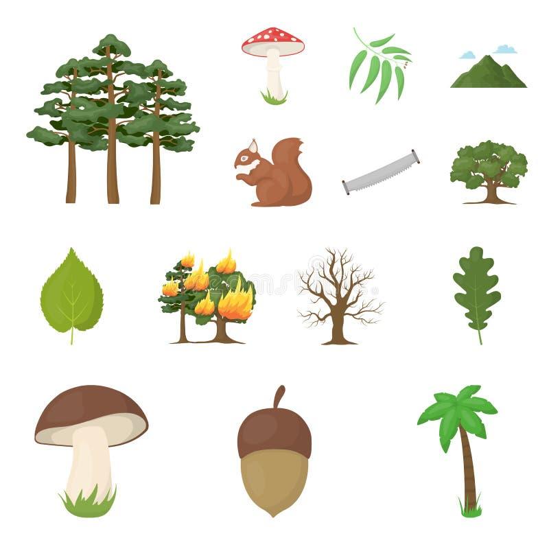 Skog- och naturtecknad filmsymboler i uppsättningsamlingen för design Illustration för rengöringsduk för materiel för symbol för  stock illustrationer