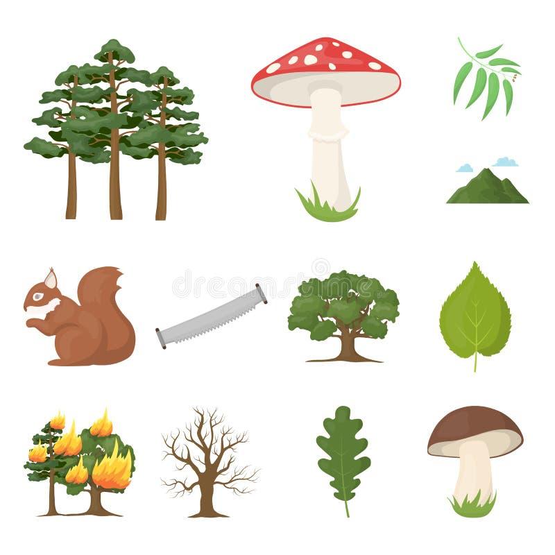 Skog- och naturtecknad filmsymboler i uppsättningsamlingen för design Illustration för rengöringsduk för materiel för symbol för  royaltyfri illustrationer