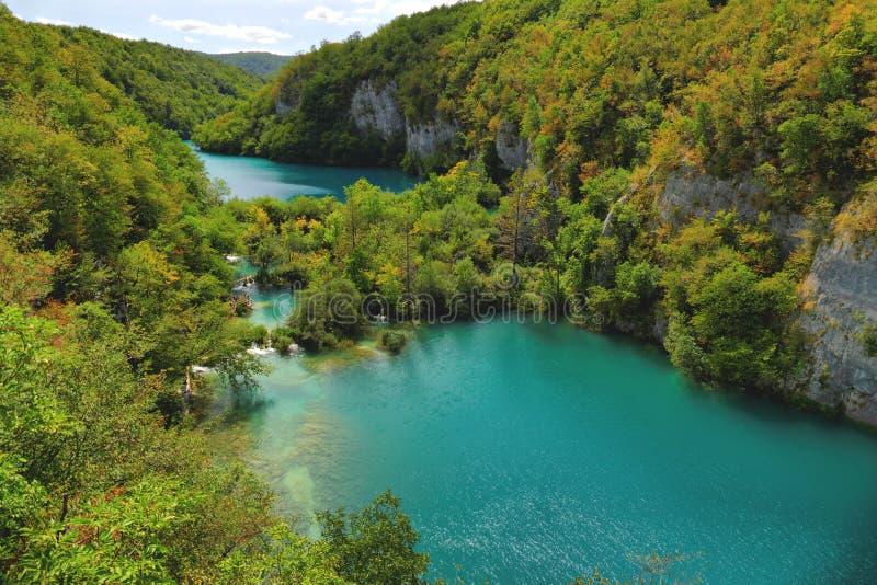 Skog och sjöar royaltyfri foto