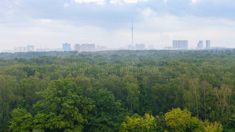 skog och stad på horisont på regnig dag royaltyfria foton