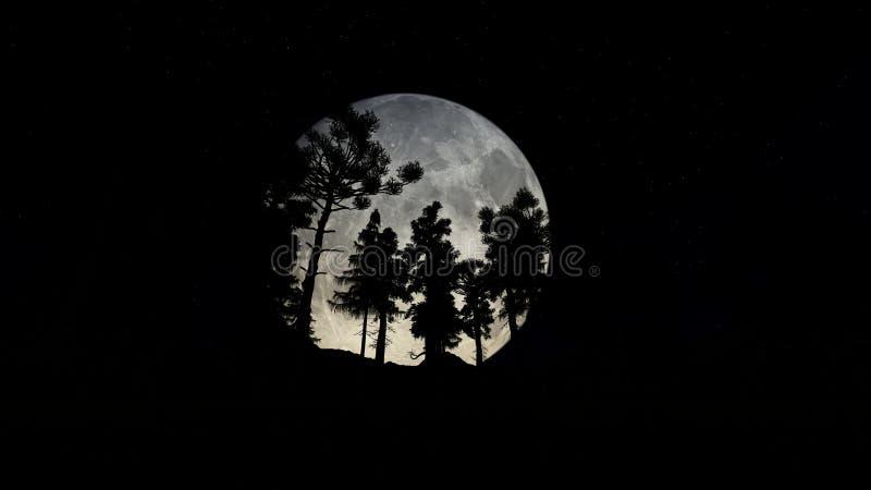 Skog på natten med den stora fullmånen vektor illustrationer