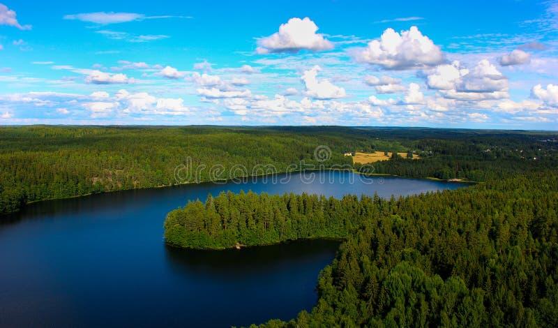 Skog sjö fotografering för bildbyråer