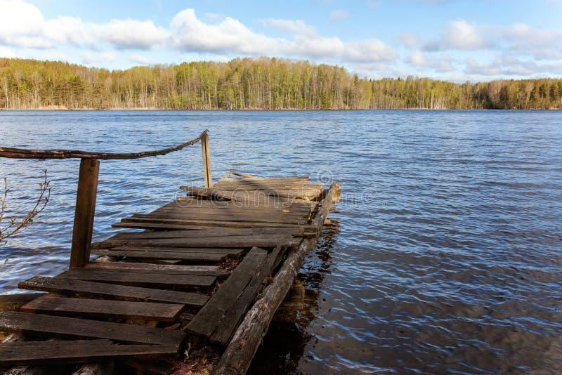 Skog sjö eller flod på sommardag och gammal lantlig träskeppsdocka eller pir royaltyfri foto