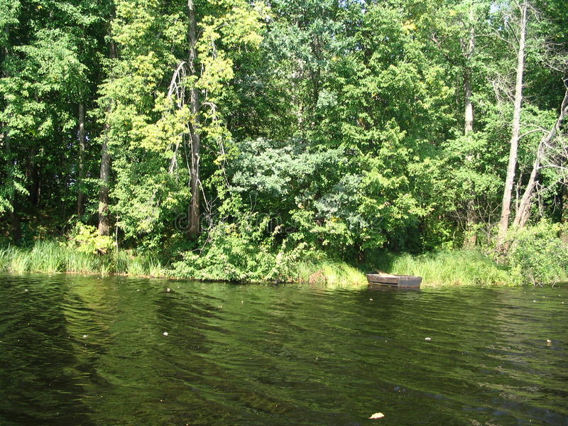 Skog sjö i Ryssland arkivbild