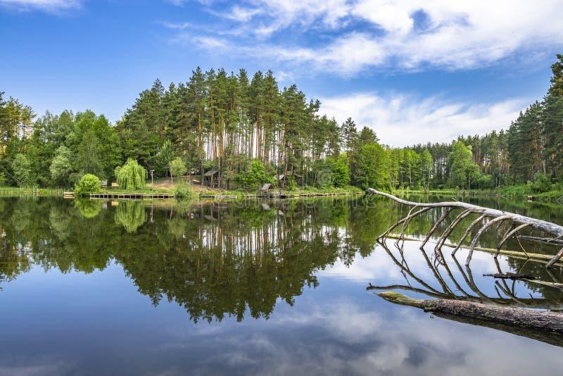 Skog sjö med reflexion i vatten Sommarstället med axeln för att fiska, kopplar av fotografering för bildbyråer