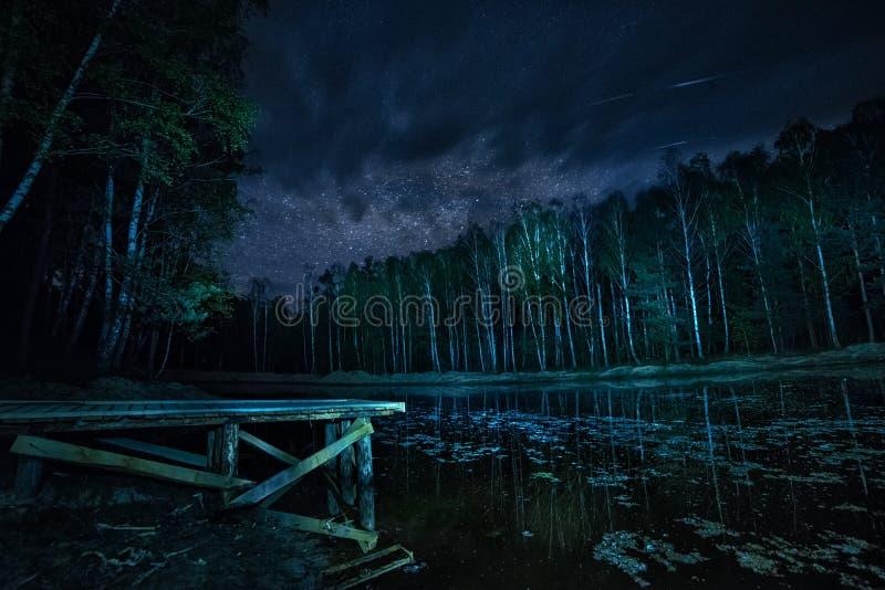 Skog sjö och den stjärnklara himlen på natten royaltyfria bilder