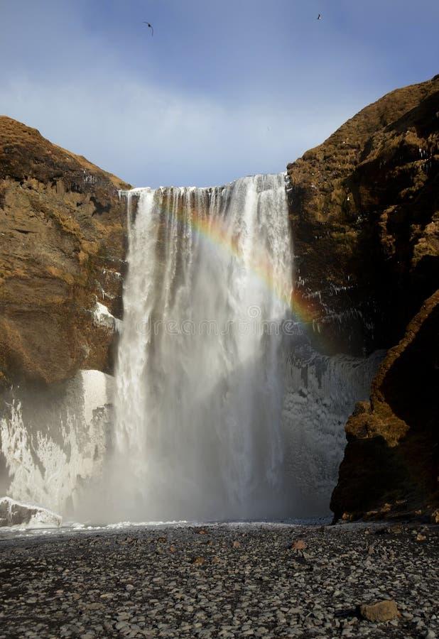 Skogafoss vattenfall på den Skougau floden, i söderna av Island, i den Sydurland regionen royaltyfri fotografi