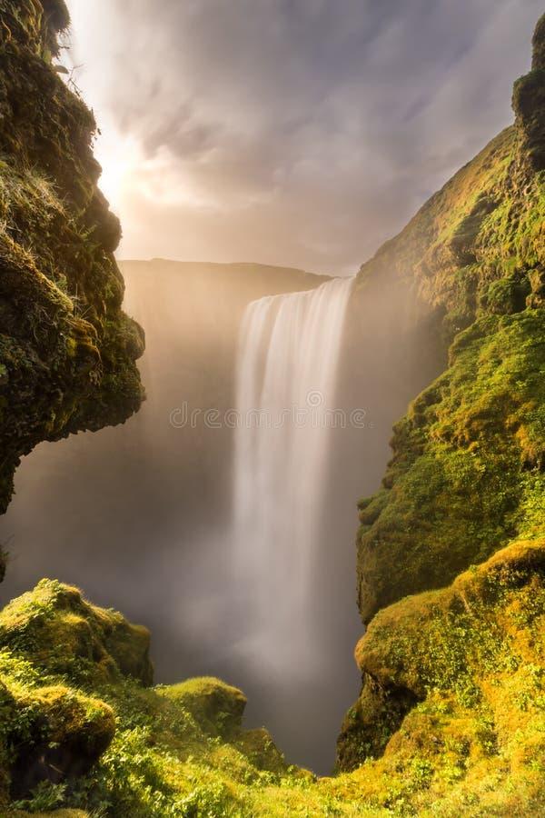 Skogafoss vattenfall på solnedgången royaltyfri fotografi