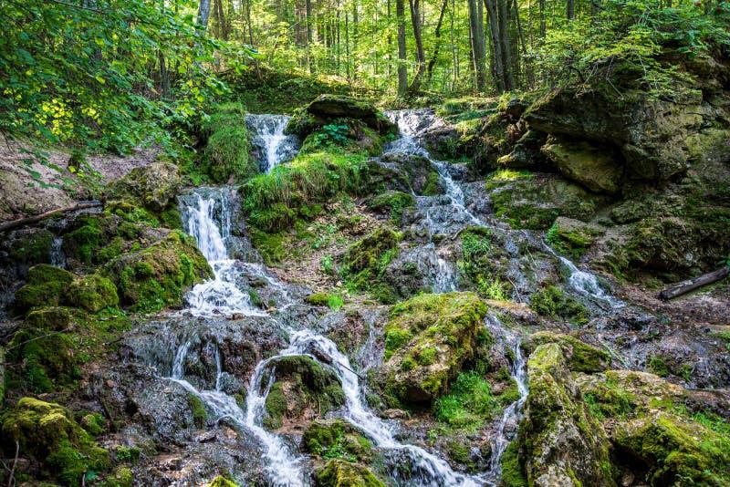 skogbergfloden med vattenfallet ?ver vaggar royaltyfria bilder