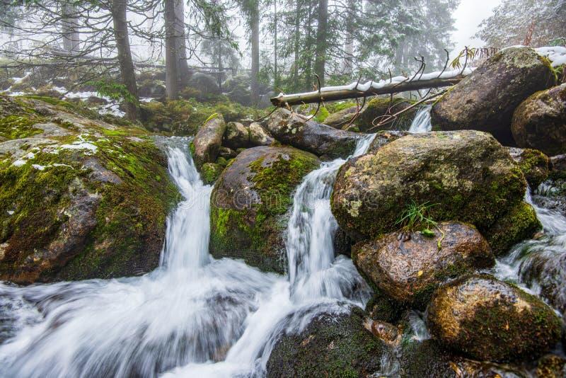 skogbergfloden med vattenfallet ?ver vaggar royaltyfri fotografi