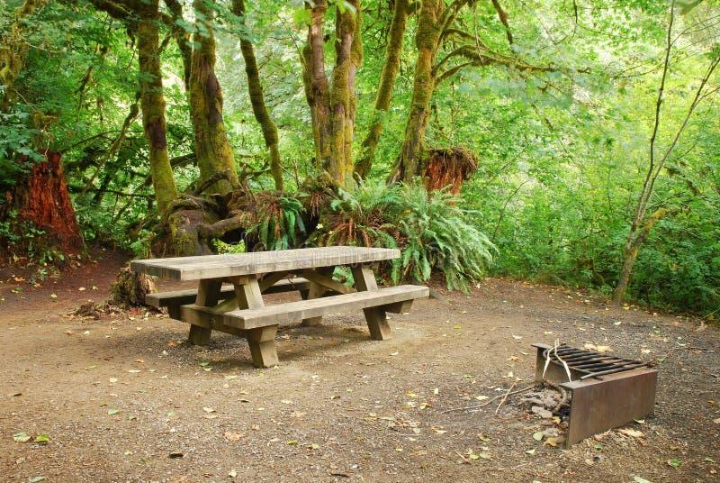 Skogcampingplats royaltyfria bilder