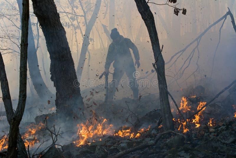 skogdämpning för 21 brand arkivfoto