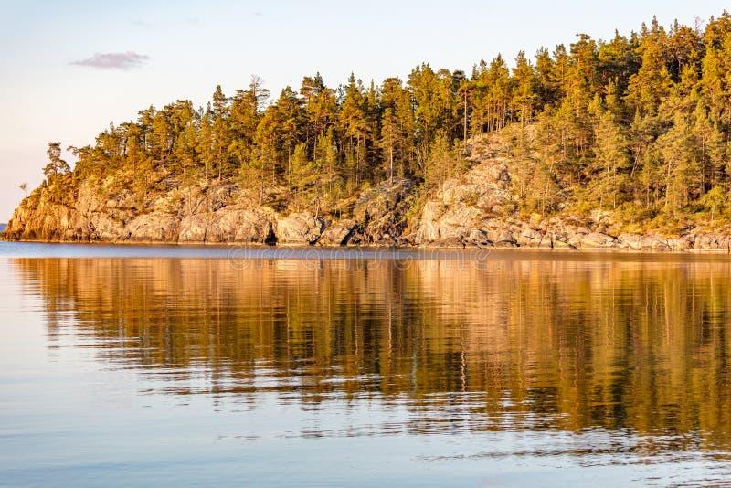 Skogen och vaggar att reflektera i havet mycket tidigt på morgonen arkivfoton