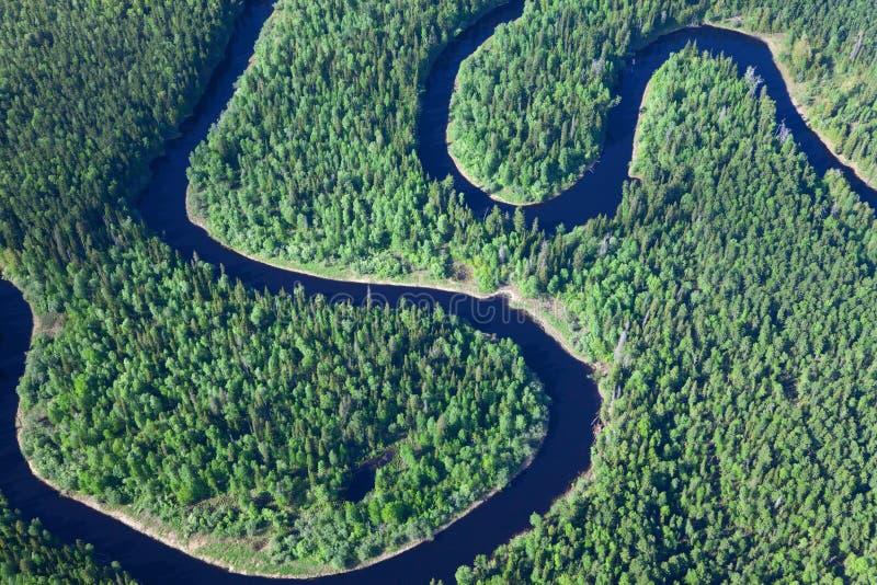 Skogflod för flyg- sikt royaltyfri fotografi