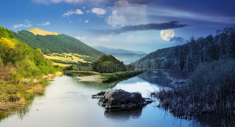 Skogflod med stenar och gräs royaltyfri fotografi