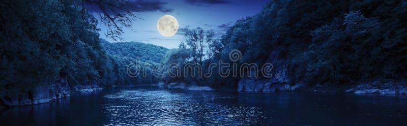 Skogflod med stenar på kuster på natten arkivfoto