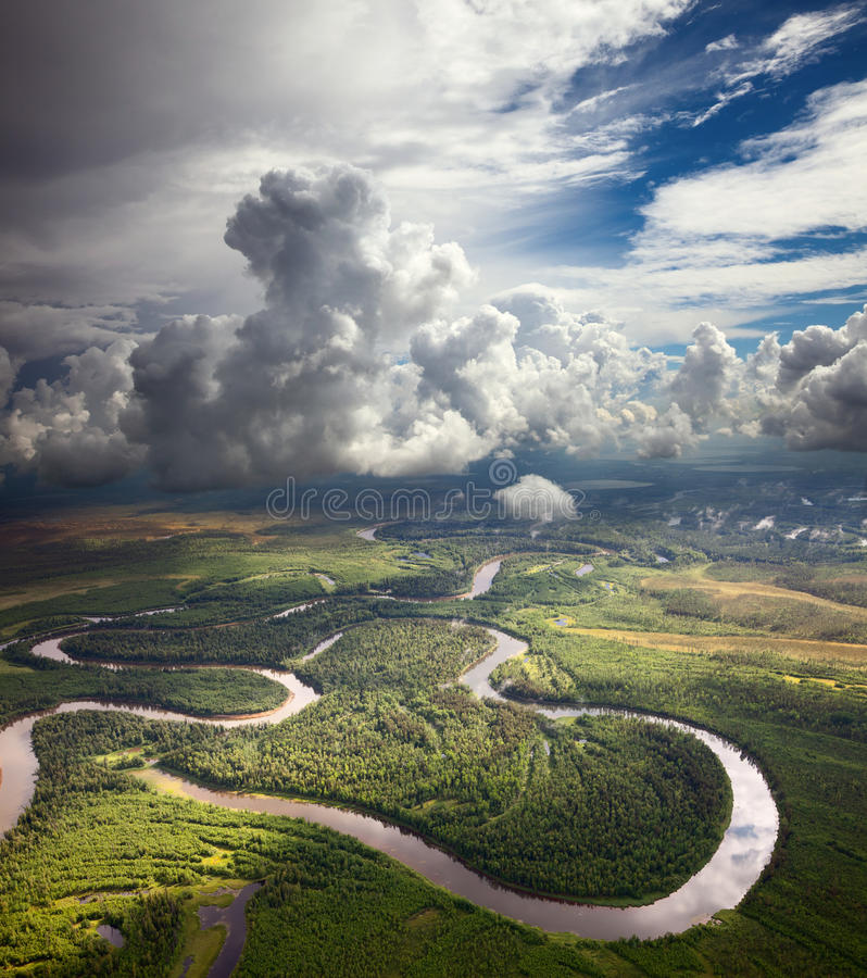 Skogflod under de vita oklarheterna arkivbild