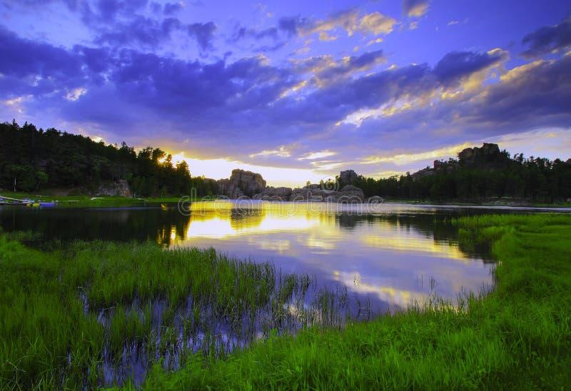Skogig solnedgång royaltyfri bild