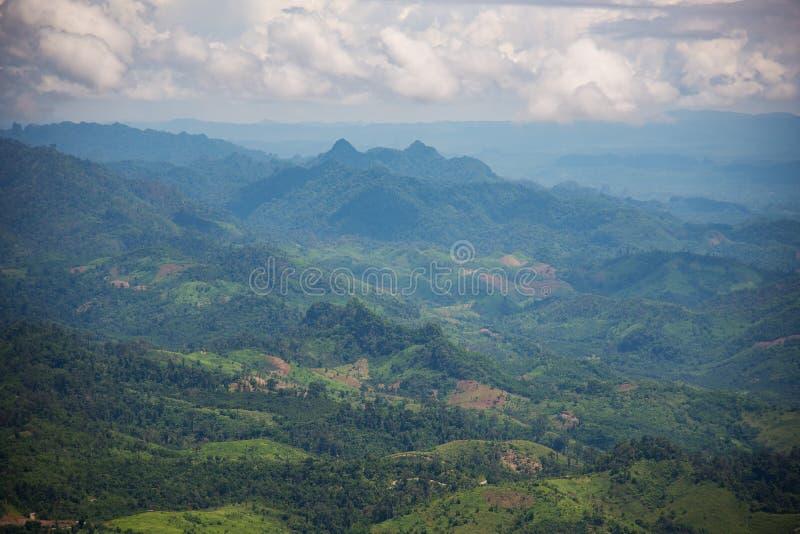 Skogingrepp som planterar havre Tak, Thailand royaltyfri fotografi
