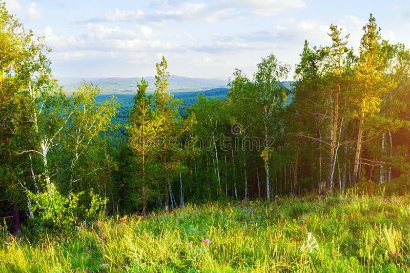 Skoglandskap - blandade skogträd på berglutningarna och sjö under mjukt solnedgångljus arkivbilder