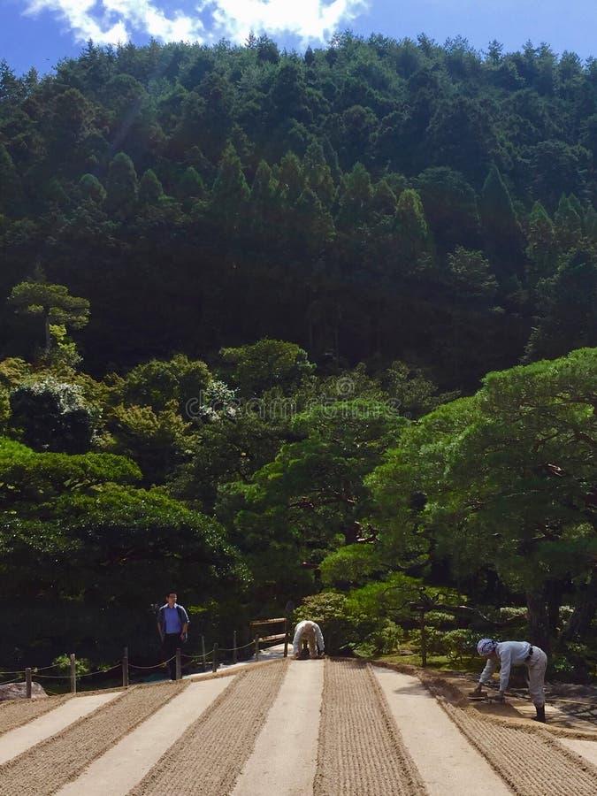 Skoglandskap på den Ginkakuji silverpaviljongen royaltyfri fotografi