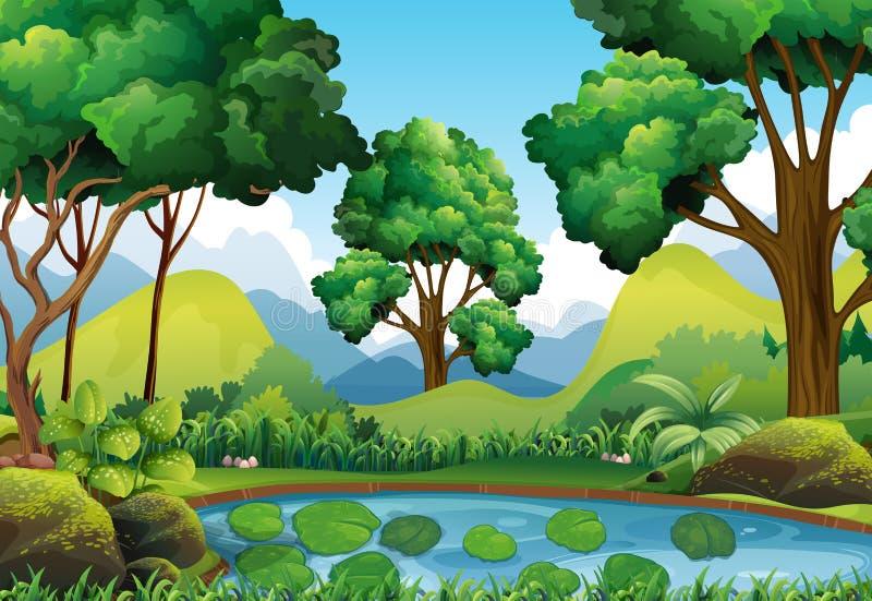 Download Skogplats Med Träd Och Dammet Vektor Illustrationer - Illustration av damm, sommar: 78730998