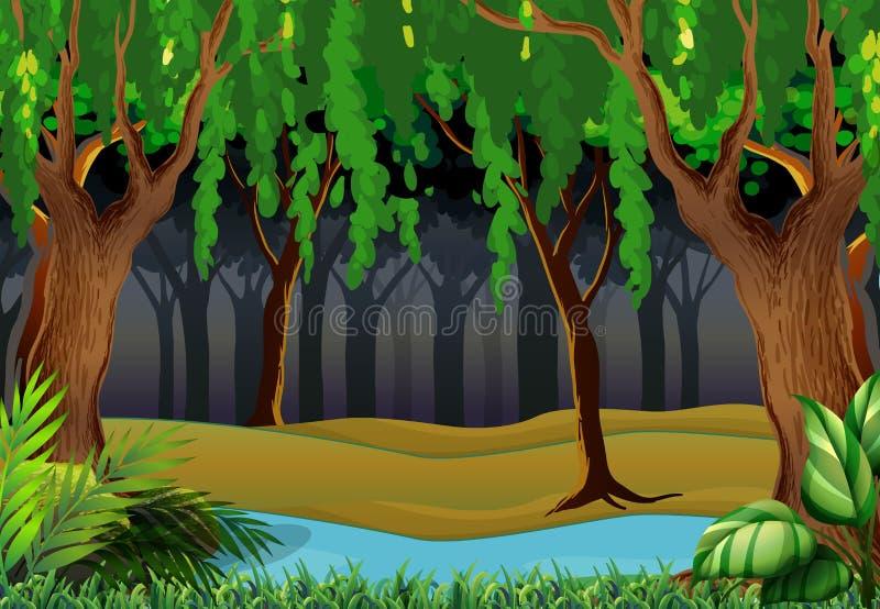 Download Skogplats Med Träd Och Floden Vektor Illustrationer - Illustration av green, mörkt: 78731398
