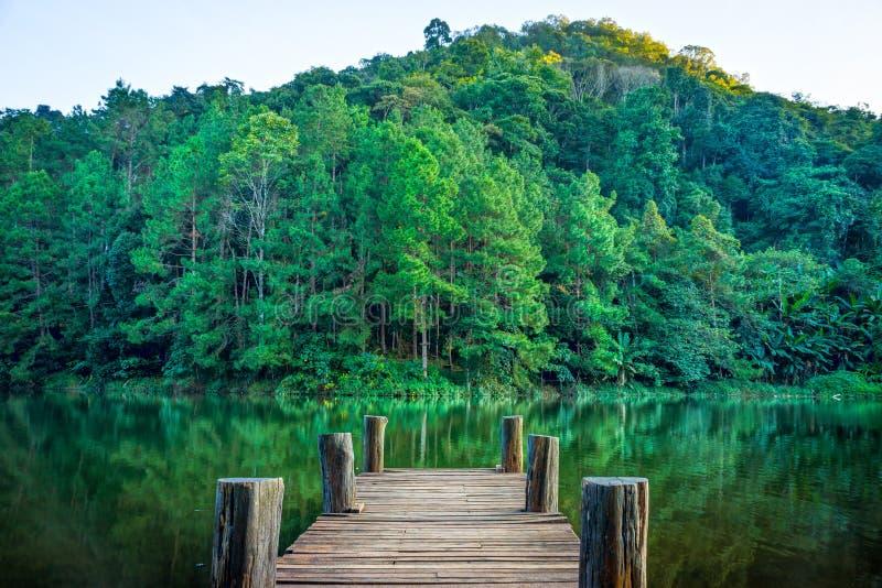 Skogplats och träpir i den naturliga Huai Makhuea Som sjön royaltyfri bild