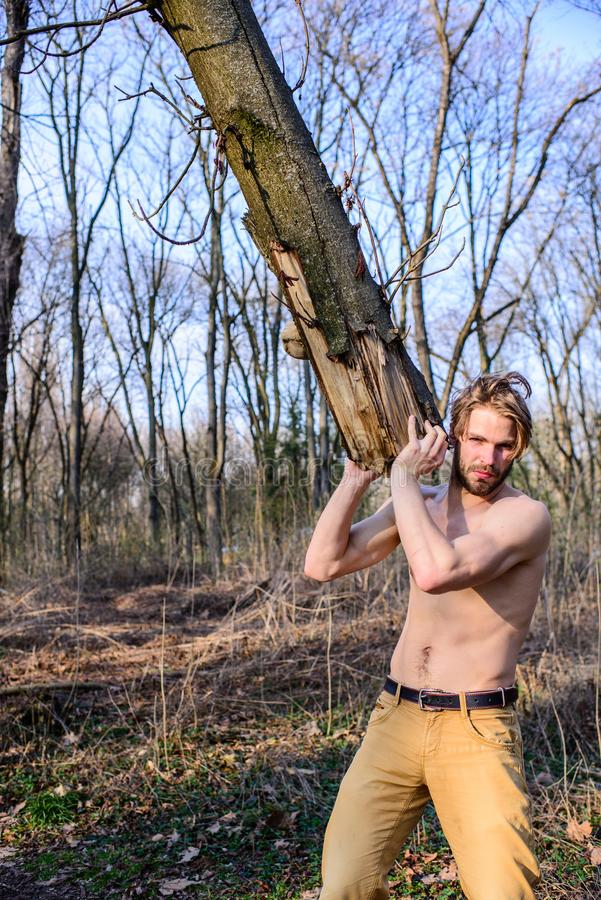 Skogsarbetare eller trä för sexig naken muskulös torso för skogsarbetare annalkande Manlighetbegrepp Brutal stark attraktiv grabb royaltyfria foton
