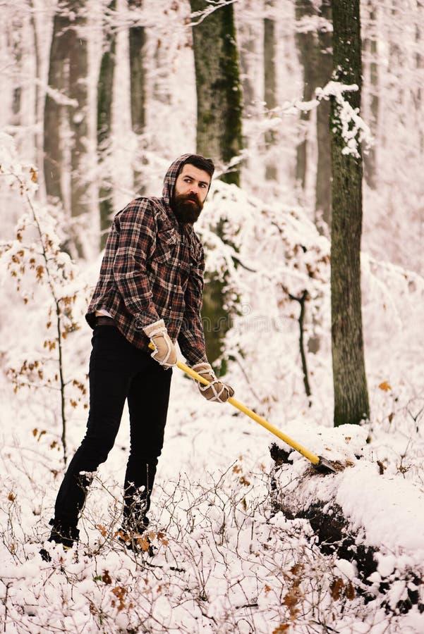 Skogsarbetare med träd som täckas av snö på bakgrund royaltyfria foton