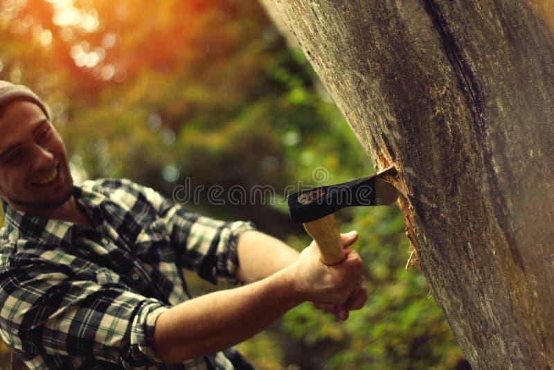Skogsarbetare som hugger av en trädstam i skogen royaltyfri foto