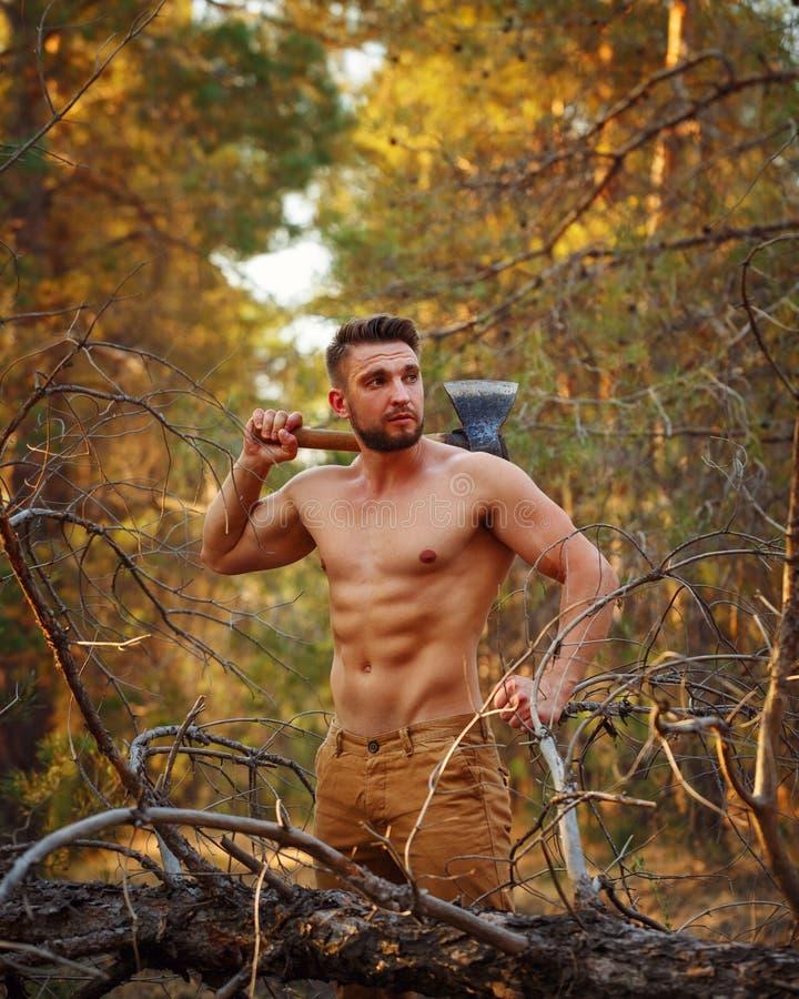 Skogsarbetaren vilar royaltyfri bild
