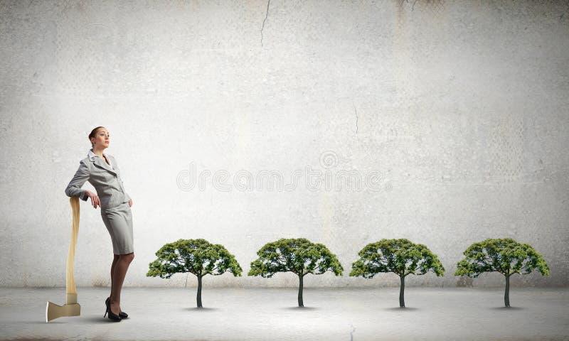 Skogsavverkningproblem fotografering för bildbyråer