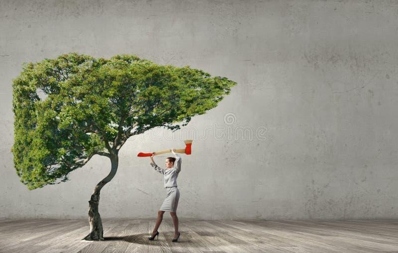 Skogsavverkningproblem royaltyfri fotografi