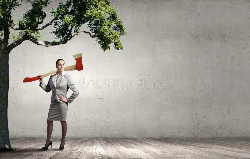 Skogsavverkningproblem arkivfoton
