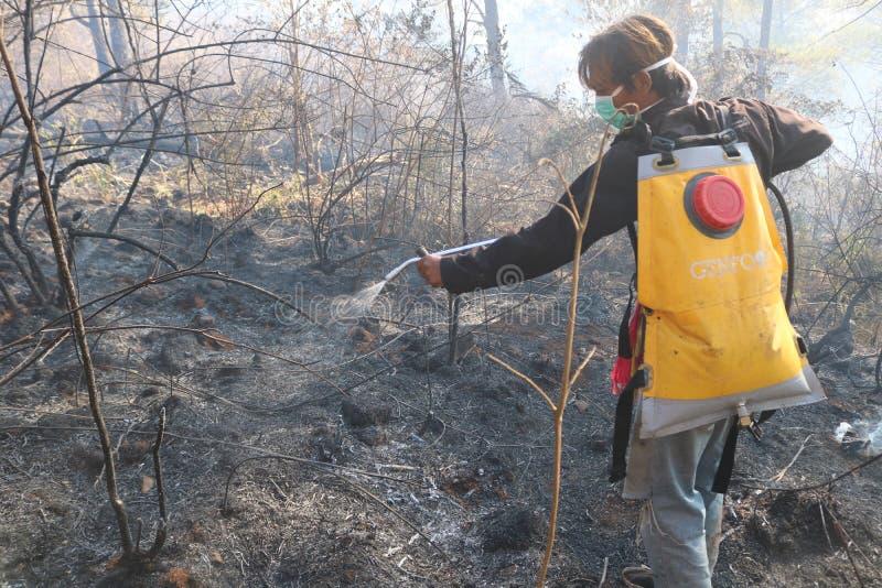 Skogsbränder på berget Bawakaraeng, South Sulawesi, Indonesien royaltyfria bilder