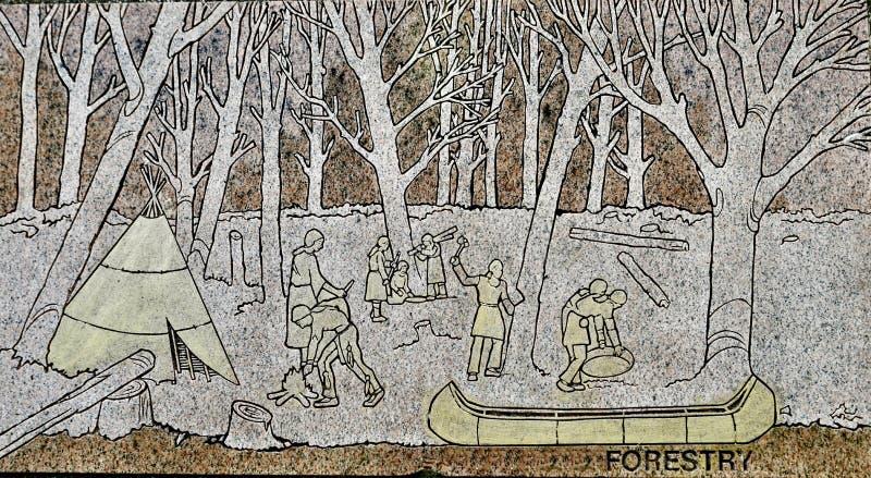 skogsbruk arkivbild