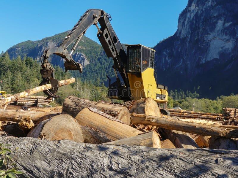 Skogsbrukutrustning som loggar bråteträ royaltyfria bilder