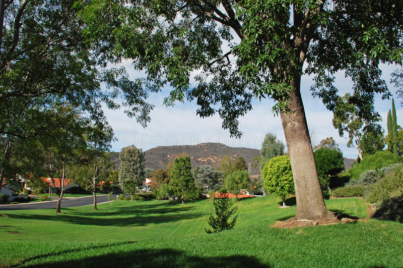 Skogsmarken parkerar i gemenskap för den Laguna träavgången royaltyfri foto