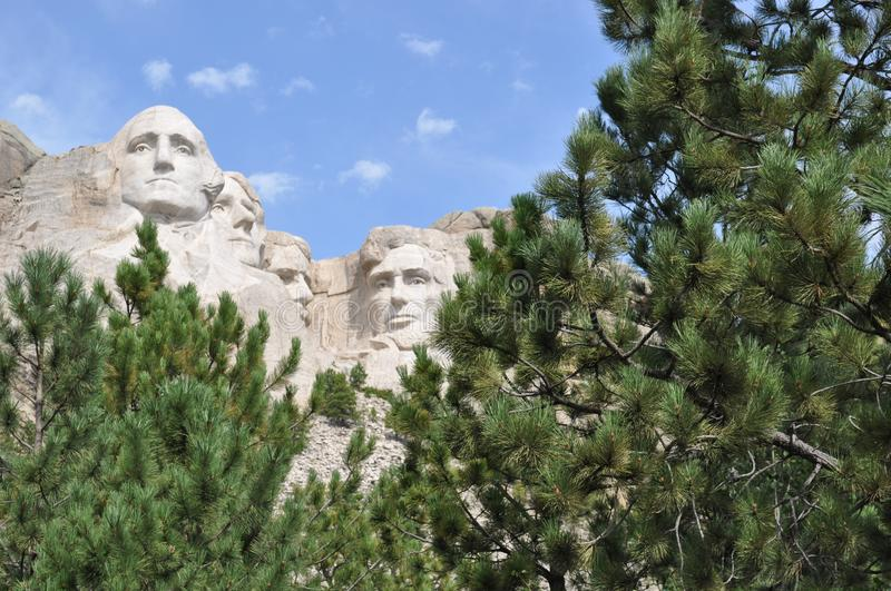 Skogsmarker för Mt Rushmore South Dakota arkivbild