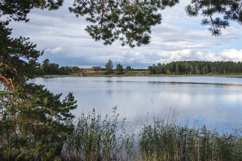 Skogssjon, Mjolby, Szwecja zdjęcie stock