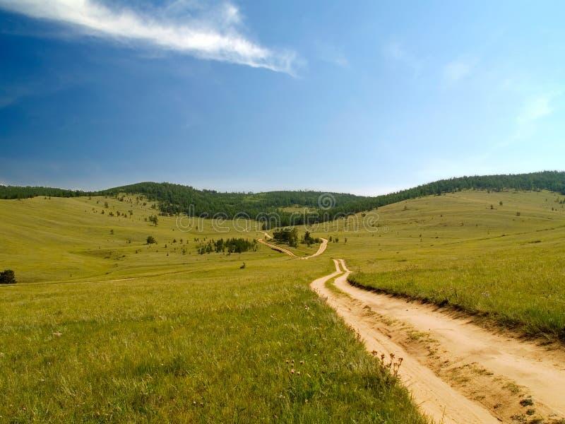 skogväg till royaltyfri foto