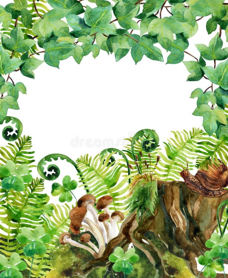 Skogvattenfärgbakgrund vektor illustrationer