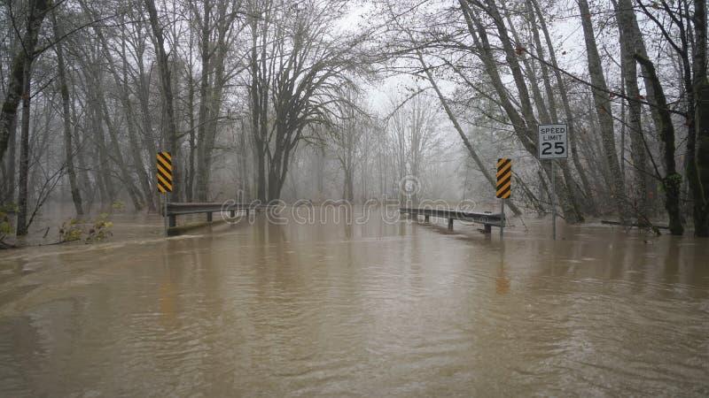Skokomish从大雨的河洪水 库存图片
