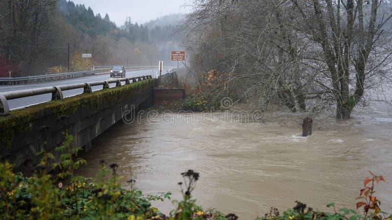 Skokomish从大雨的河洪水 免版税库存照片