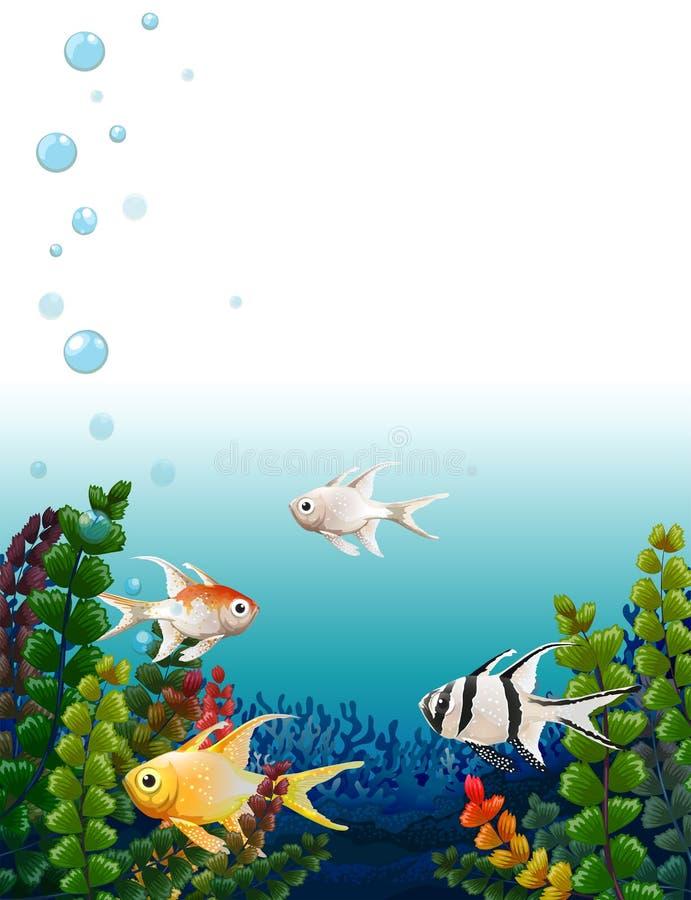 Skola av fiskar under havet stock illustrationer