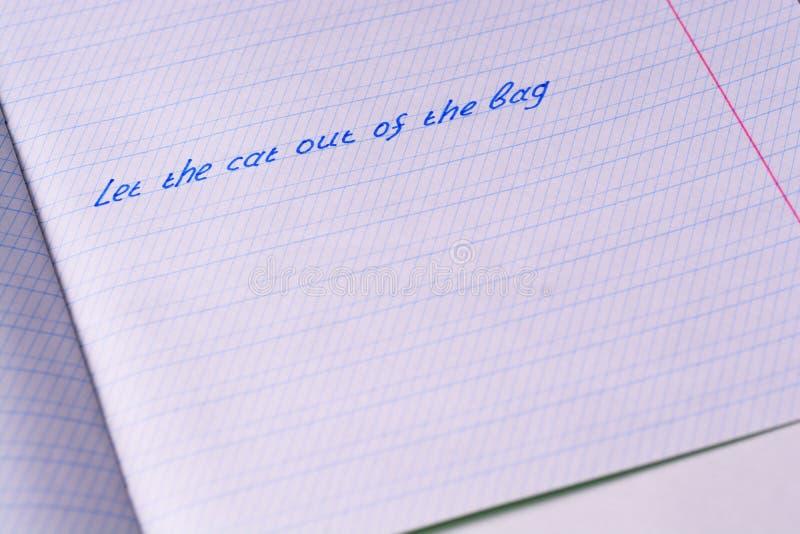 Skolaanteckningsboken med uttryck 'lät katten ut ur påsen ', fotografering för bildbyråer