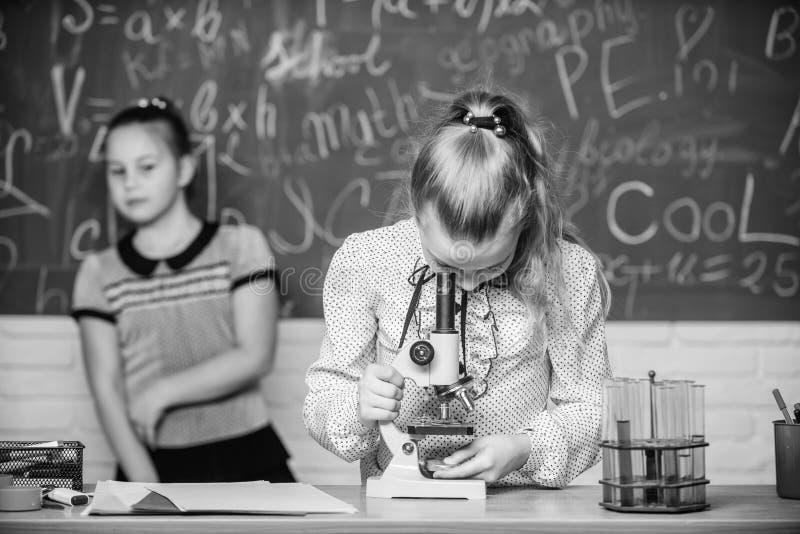 Skolagrupper Flickor studerar kemi i skola Biologi- och kemikurser Teori och ?vning Observera kemiskt royaltyfria foton